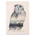 Print Faunascape Owl