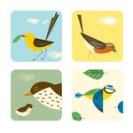 Untersetzer Birdy, 4er Set