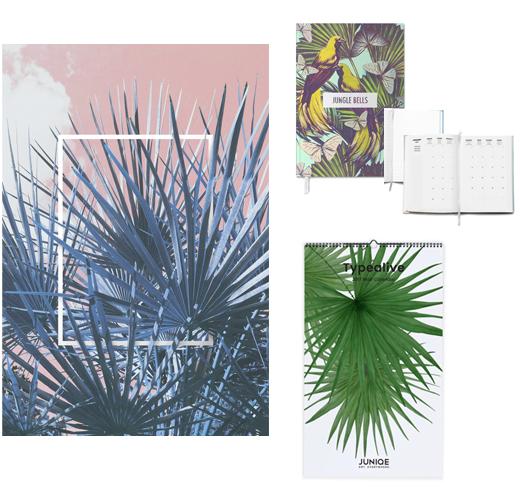 Acrylglasbild, Wandkalender und Jahresplaner mit Palmen
