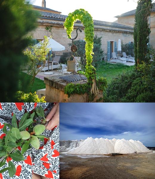 Wellness und Spa Hotel mit Thermalquelle Fontsanta auf Mallorca, mit den Salinen in der Nähe des Naturstandes Es Trenc, Mandel