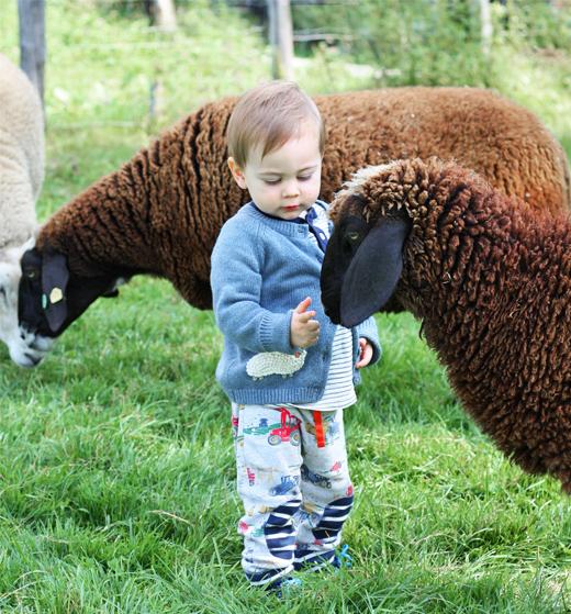 Kindermode im Herbst von Boden, Cardigan mit Schaf Stickerei und Wendehose mit Traktor Muster