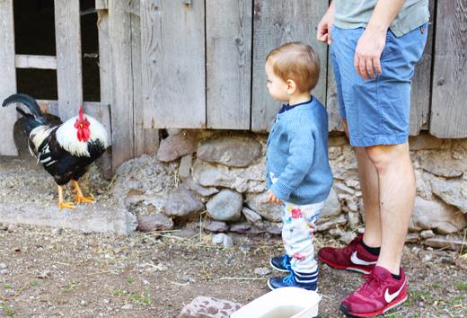 Ferien auf dem Bauernhof mit Kindern für die ganze Familie in Österreich, Millinghof, Leogang