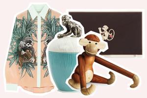 Trend Affe sommer 2014 mode und lifestyle