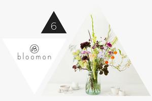 Blumen-Abo von bloomon im Adventskalender gewinnen