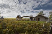 Aes Wineyard and Wine Camping Hotel in Ungarn über Urlaubsarchitektur.de buchen, ferienhäuser, Architektur