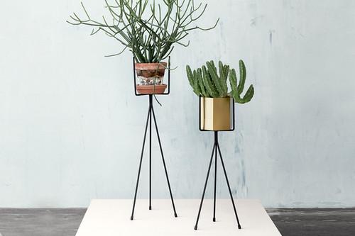 catch of the day pflanzenst nder von ferm living the. Black Bedroom Furniture Sets. Home Design Ideas