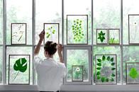FRAMES Glasrahmen von moebe für Blumen und Pflanzen