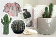 Wohntrend und Modetrend Kaktus - Mit Prints und Drucken für Kleidung und Wohnaccessoires, Kaktus Vase Serax, Kaktus Sitzkissen, Kaktus Porzellan