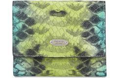 Portemonnaies mit Animal-Print sind aktuell besonders angesagt und gehören in jede It-Bag!