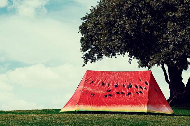 Zelt von Field Candy mit Wassermelonen-Print