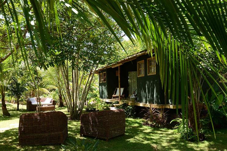 Grüne Palmen vor dem Butterfly House in Brasilien Bahia