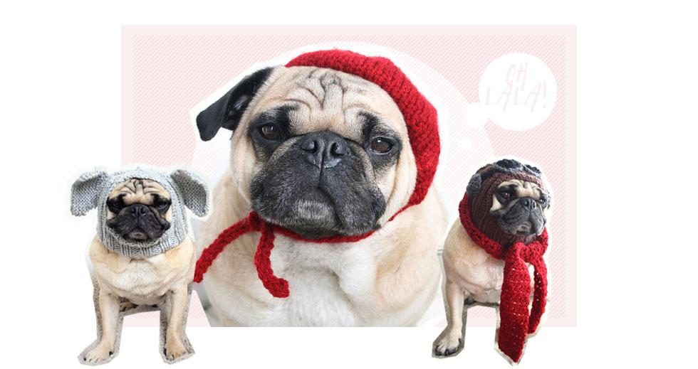 lustige hüte und mützen für mops hunde bei etsy shop