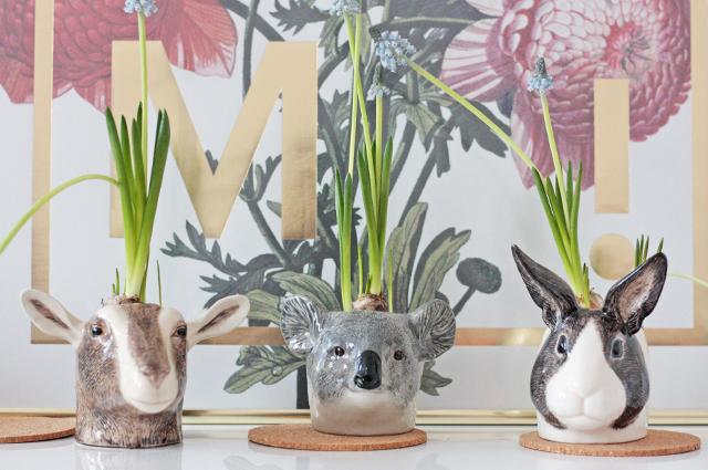 Porzellan Tiere und Eierbecher von Quail Ceramics, Ziege, Koala und Hase, Porzellanfiguren